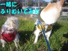 IMG_8027-1.jpg