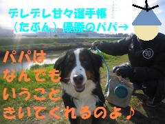 IMG_8053-1.jpg