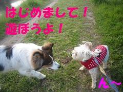 IMG_8077-1.jpg