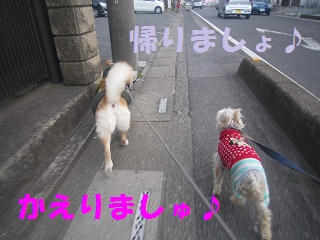 IMG_8122-1.jpg
