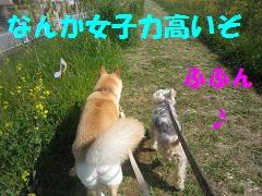 IMG_8233-1.jpg
