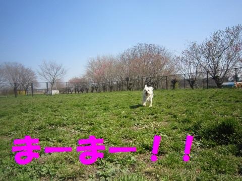 IMG_8287-2.jpg