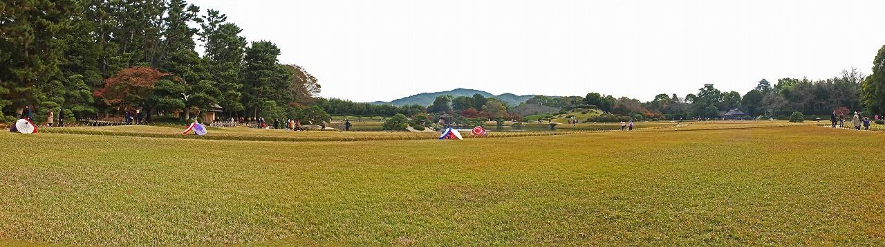 s-20151129 後楽園秋の幻想庭園最終日の今日の昼間の園内ワイド風景 (1)