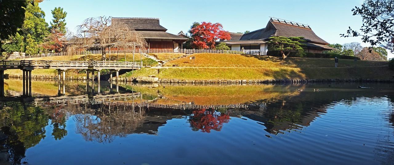 s-20151207 後楽園今日の園内花葉の池のワイド風景 (1)