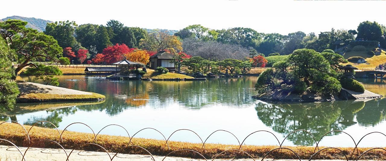 s-20151208 後楽園今日の沢の池越しに眺めた園内ワイド風景 (1)