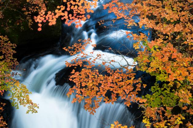 竜頭の流れと秋彩・奥日光