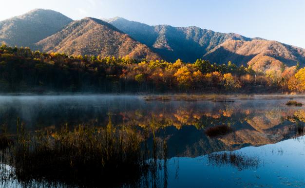 秋の観音沼