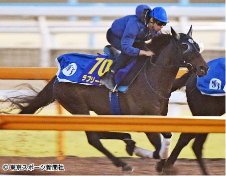 【競馬】なぜ宝塚記念馬は秋天を勝てないのか?