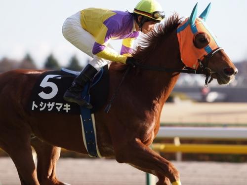 【競馬ネタ】都市名が付く馬で最強馬ってなに?