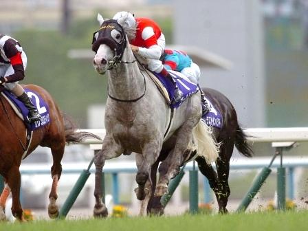 【ジャパンカップ】ゴールドシップ助手「先入れなんかより隣に牝馬がいることが心配」