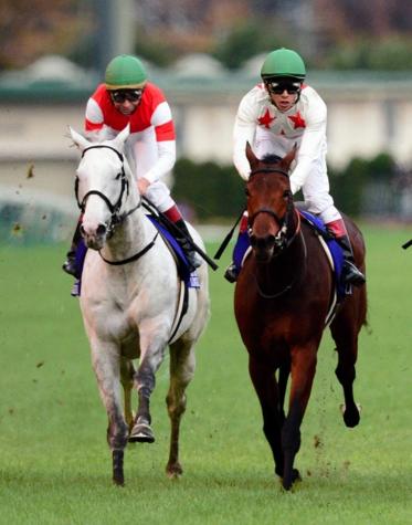 【競馬】横山典(ゴールドシップ)「まくる競馬はしないでくれと言われていた」