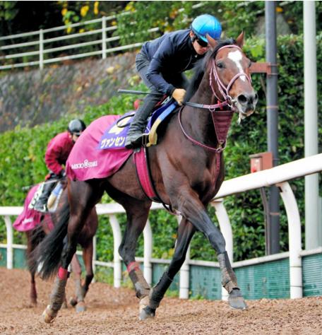 【競馬】ヴァンセンヌ引退種牡馬入り