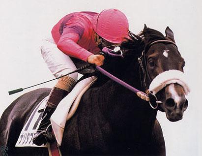 【競馬】スピードとスタミナが高レベルでバランスも絶妙な馬