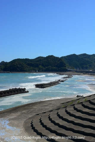 2015秋・徳島