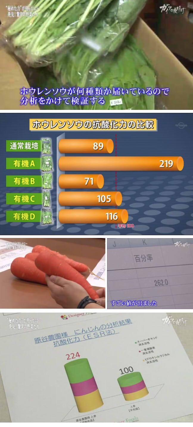栄養価の高い野菜01