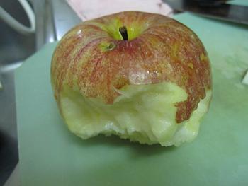 りんごが・・・ 008