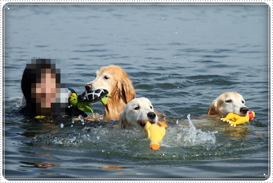 2015,9,8琵琶湖5