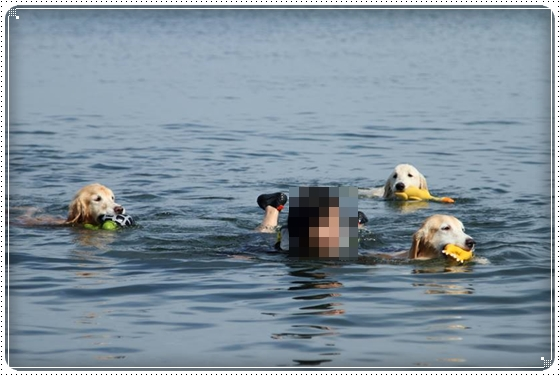 2015,9,8琵琶湖1