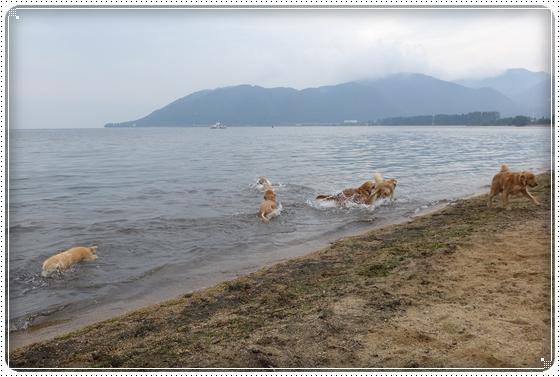 2015,10,14琵琶湖1