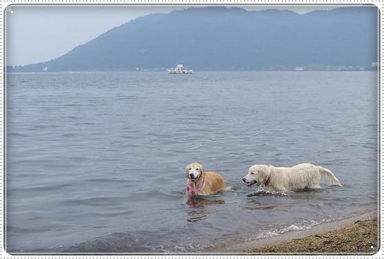 2015,10,14琵琶湖7