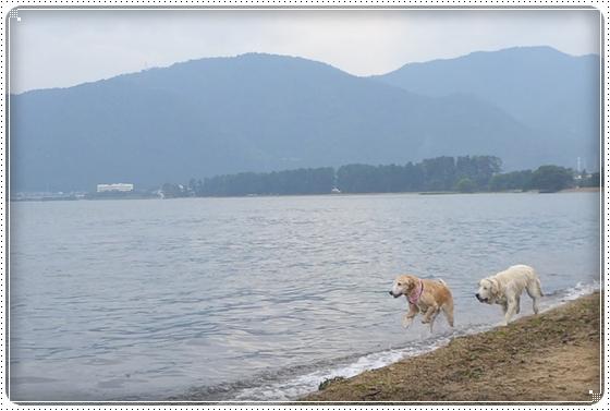 2015,10,14琵琶湖6