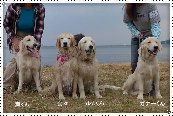 2015,10,14琵琶湖10