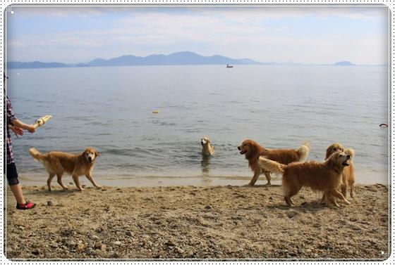 2015,10,17琵琶湖4
