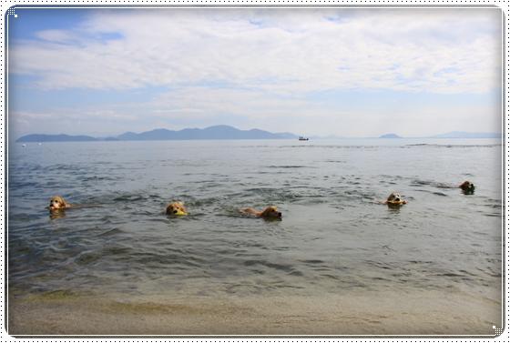 2015,10,17琵琶湖5