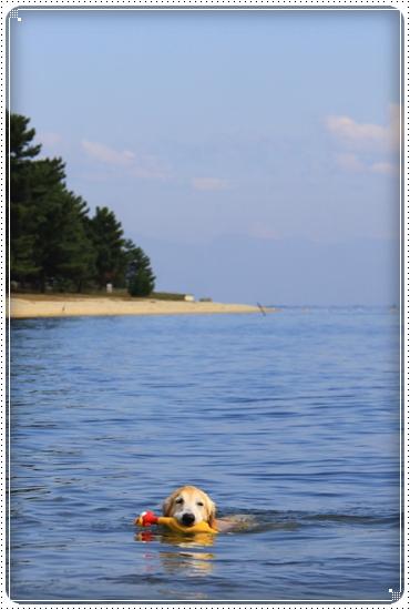 2015,10,17琵琶湖7