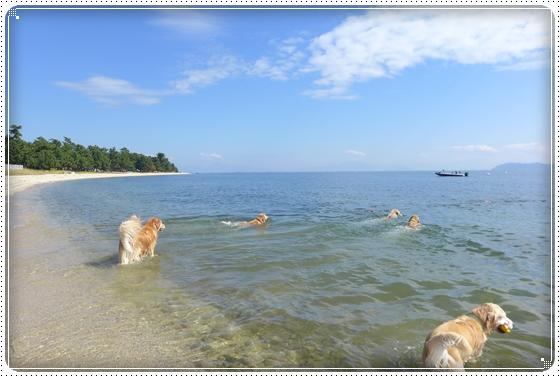 2015,10,18琵琶湖15