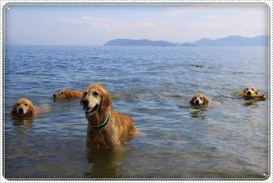 2015,10,18琵琶湖6
