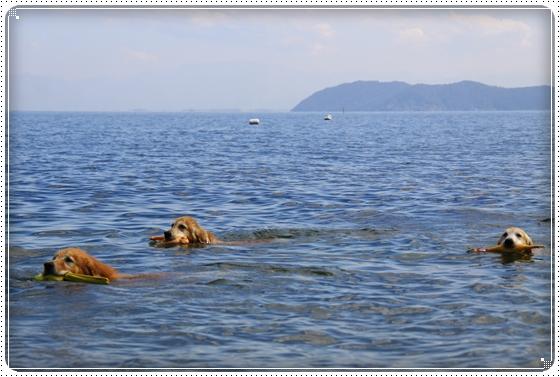 2015,10,18琵琶湖19