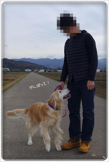 2015,12,7お散歩5
