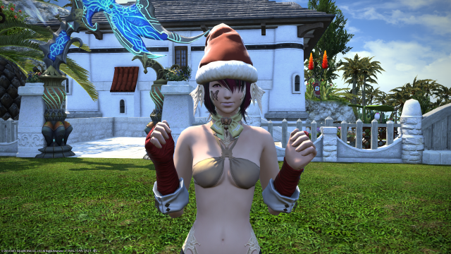 s_ffxiv_20150828_084733.png