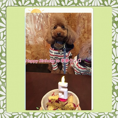 来夢くん/Birthday Boy♪♪
