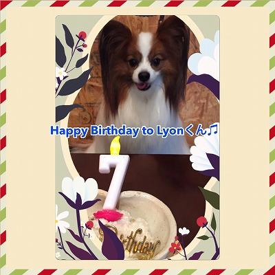リヨンくん/Birthday Boy♪♪