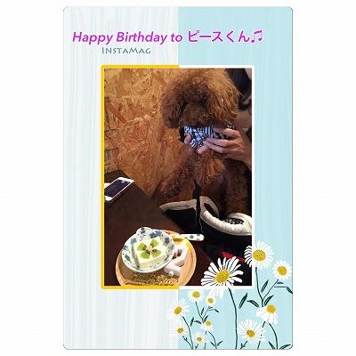 ピースくん/Birthday Boyくん♪♪