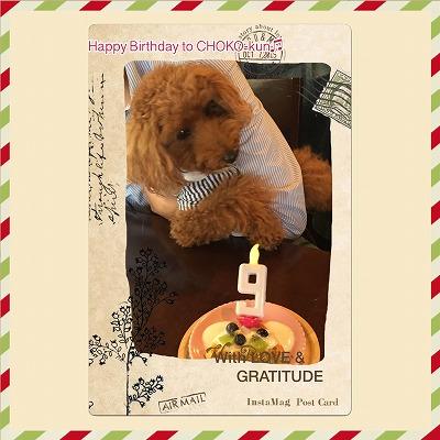 チョコ王子/Birthday Boy♪♪