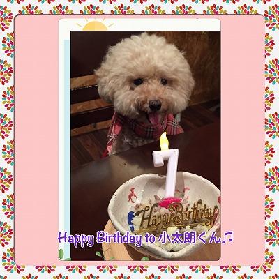 小太朗くん/Birthday Boy♪♪