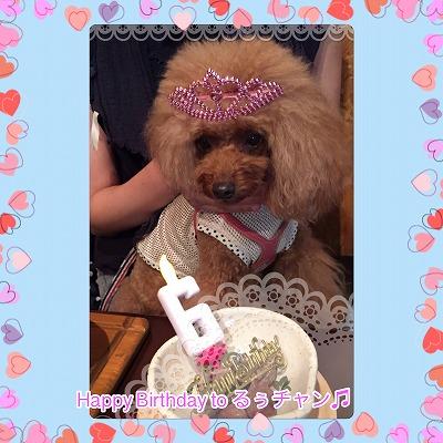 るぅチャン/Birthday Girl♪♪