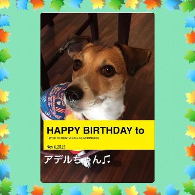 アデルちゃん/Birthday Girl♪♪