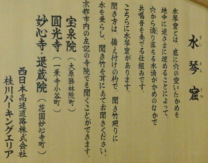 2 桂川DSC_6367