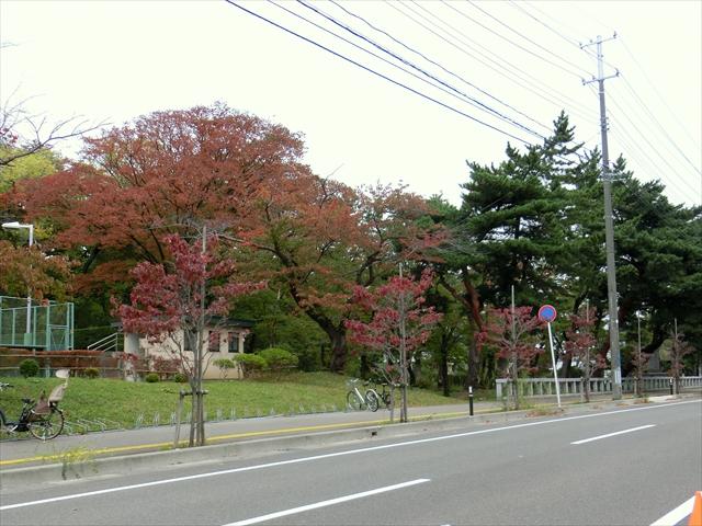 151011-01.jpg