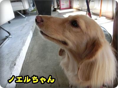 ともnet10083