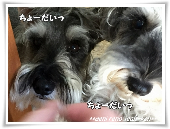 1006_1h.jpg
