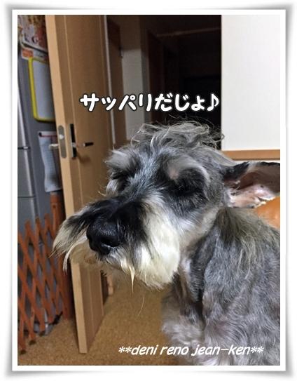 1206_1b.jpg