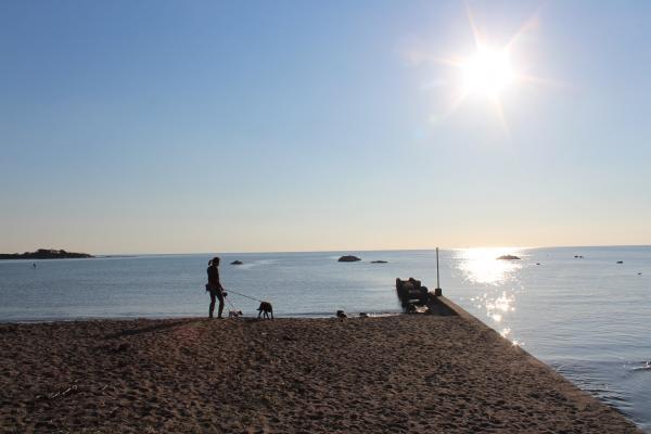 海散歩13