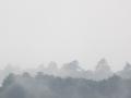 霧の青葉山