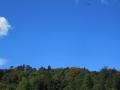 青空とトンボ