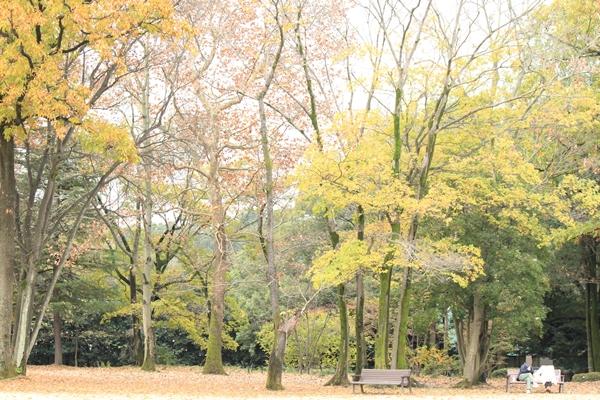 IMG_4988群馬の森8